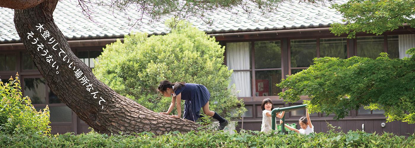 私立自由学園小学校:木登りしていい場所なんて、そうそうない。